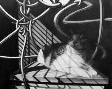 """あたまかくしてしりかくさず  Hiding in the shadow, 2018, graphite on paper, 14 3/4 x 21 1/4"""""""