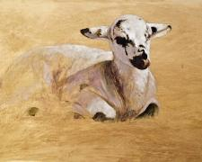 "Dormant Lamb, 2018, acrylic and graphite on paper, i.s. 8 1/2 x 14 1/2"" / f.s. 13 3/8 x 19 3/8"""