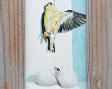 Goldfinch and Emerging Snake, 2020, acrylic on board, Kermit frame, 13 1/2 x 9""