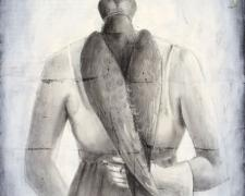 Hooded Falcon, 2005, charcoal, acrylic, paper, 24 x 18""