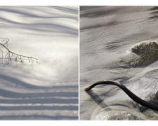 """Wabi, 2013, archival inkjet print, ed. 1/10, 12 x 24"""""""