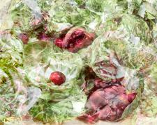 "brussel sprouts and pomegranate seeds, 2019, archival inkjet pigmented print, s.s. 16 x 22"" / f.s. 24 x 30"", ed. 2/7"