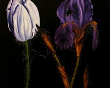 The Tulip and the Iris 2004 Oil on canvas 42 x 42""