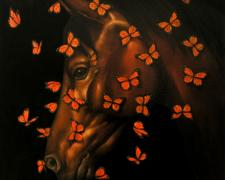 Lepidoptera Equus 2005 Oil on canvas 34 x 34""