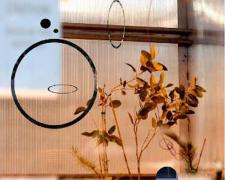 "Earthly Matters: Delicate Balance, 2009, handmade photo collage on panel, 8 1/2 x 8 1/2"", ed. 1/10"