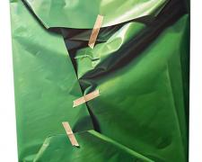 An Area for Recognition of Green, 2012, oil on canvas, 27 1/2 x 24""