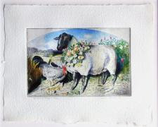 "Garlanded Sheep, 1998, etching with unique hand coloring, s.s. 10 x 12 3/4""/ i.s. 5 3/4 x 9"""