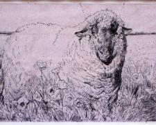 Gold Sheep Among Red Poppies - Study, 2008, pen and ink, acrylic wash, 4 1/2 x 7""