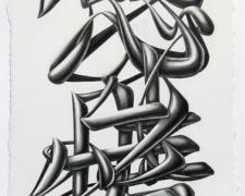 Thoughts and Emotions, 2011, graphite on paper, 14 1/2 x 7 1/2""