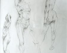 Model in 3 Views 2005 Graphite on paper I.S. 14 x 10 1/2""