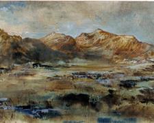 "Sierra Quemada, 2012, ink, acrylic on paper, 6 x 10"""