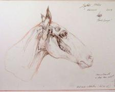 Synthetic Stubbs, 2008, red chalk and graphite on paper, i.s. 7 3/4 x 20 7/8