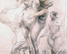 "The Birth of Venus, 2010, graphite and acrylic on panel, 20 1/8 x 11 1/4 x 2 1/4"""