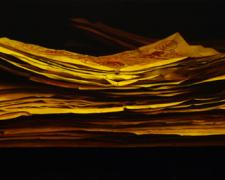 Last Emperor, 2006, oil on canvas, 29 X 54""