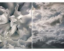 "Adieu, 2016, archival inkjet print, 22 x 44"", ed. 1/7"