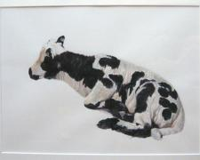 Jacob's Lamb, 2008, acrylic on paper, 18 x 26""