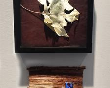 "Peace Be Still, 2015, mixed media: intaglio, leaf, and video, 10 x 10"" / video 6 x 8"""