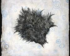Fur 2009 charcoal and acrylic on paper 10 x 10""