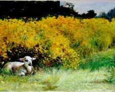 Lamb Among Marigolds, 2005, acrylic on paper, 16 x 22""