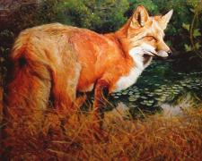 "Br'er Fox Above Lily Pads, 2006, acrylic on paper, i.s. 11 x 13 3/4"" / f.s. 25 x 27 3/4"", (Secondary Market)"