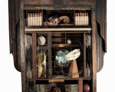 """Anima Mundi, 2009, assemblage, 32 x 24 x 8"""""""