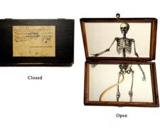 Baculum for a Dead Man, 2007, box, digital collage, baculum, print, acrylic, glass, 5 x 9 x 1""