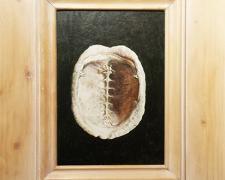 "Shell, 2014, acrylic on panel, i.s. 10 x 7 1/4 / f.s. 17 x 14 1/2"""