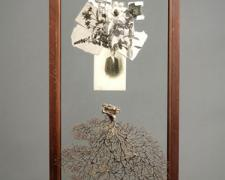 Slide 2007 Assemblage - glass cabinet door, sea fan, photographic postcard, book illustrations, steel pegs 30 1/8 x 14 x 3""