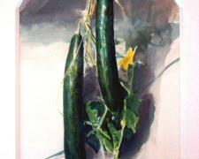 Two Cucumbers 1994 Acrylic on paper 13 1/2 x 9