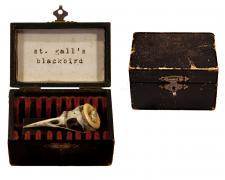 "St. Gall's Blackbird, 2015, assemblage, 2 x 3 x 2"""