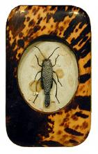 Short Story for Norma 2003 Mixed media 7 1/2 x 5 1/2""