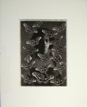 "Belle Cantos Series (Butterflies), 2012, collage, p.s. 15 1/2 x 13"" / i.s. 9 1/2 x 7"""
