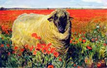 Ewe in a Poppy Field 2008 Acrylic on paper 6 1/2 x 10 1/2""