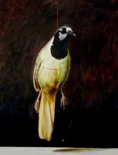 "A Green Jay Suspended by a Scarlet Cord 2006 Acrylic on paper 12 3/4 x 10"" i.s."