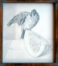 "Small Green Parrot, Wing Outstretched..., 2010, graphite on gessoed panel, frame: 14 3/4 x 13""/i.s. 13 3/4 x 11 3/4"""