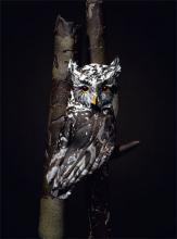 """Ferruginous Pygmy Owl 2008 Blown/off-hand sculpted glass 23 x 8 x 16"""""""