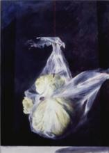 Suspended Lettuce 1999 Acrylic on paper 16 3/4 x 12 3/4""