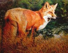 "Br'er Fox Above Lily Pads, 2006, acrylic on paper, i.s. 11 x 13 3/4""/f.s. 25 x 27 3/4"", (Secondary Market)"