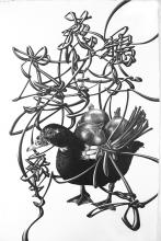 """A duck appears with onions on its back 鴨が葱しょってやって来る (And ready to cook! Without chasing after it, sometimes a lucky thing comes with a bonus.) 2015 graphite on paper 21 x 13 1/2"""""""