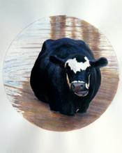 "A Pied Cow Eyes An Astonished Crowd At the Water's Far Edge 2009 Acrylic on paper 7 1/4"" diameter i.s."