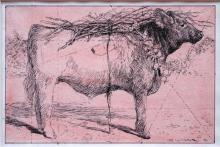 Red Heifer - Study 2008 Pen and ink, acrylic wash 4 1/2 x 7""