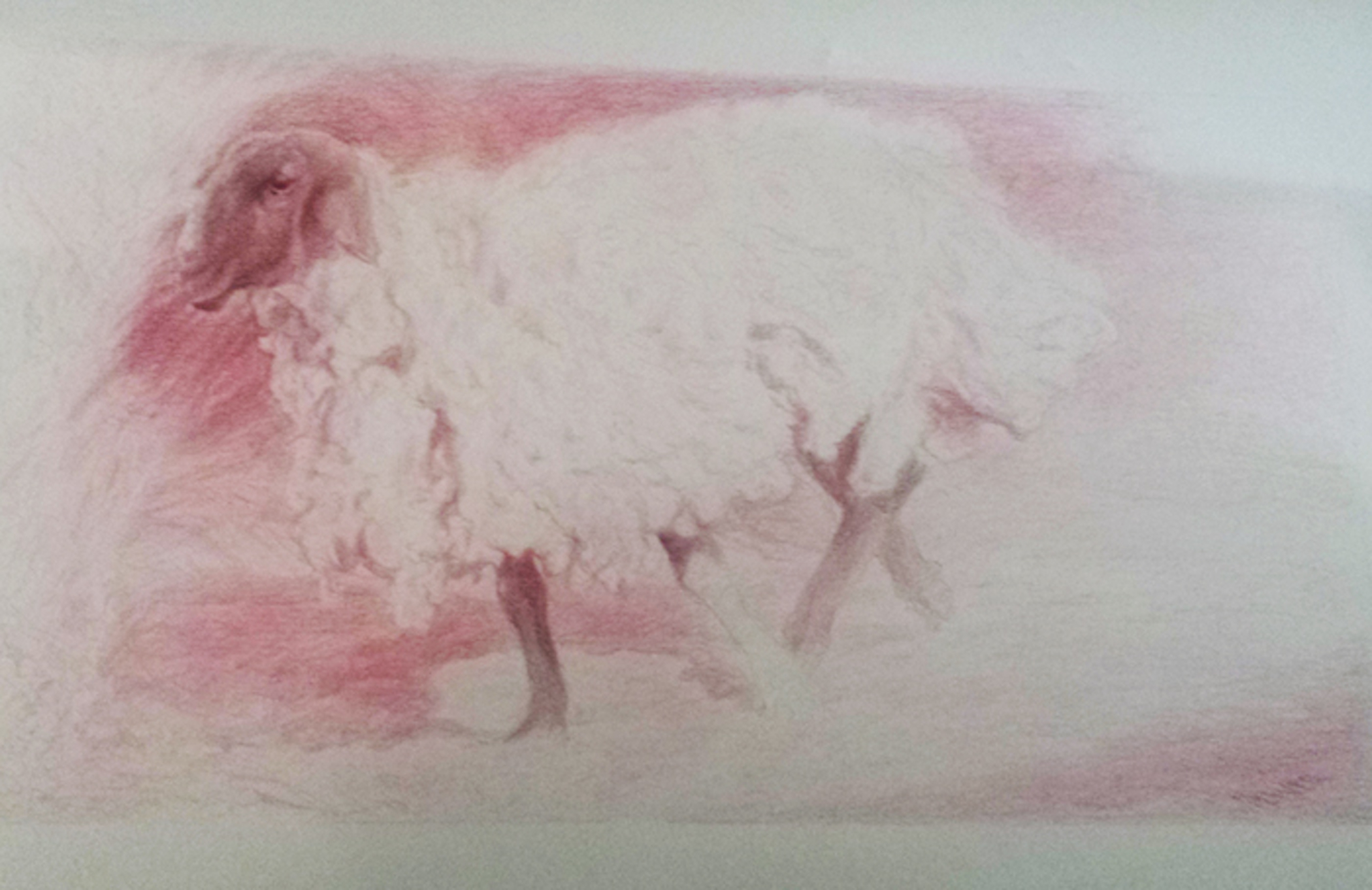 """An Urgent Ewe, 2004, red china marker on paper, 9 3/4 x 17 3/4"""""""