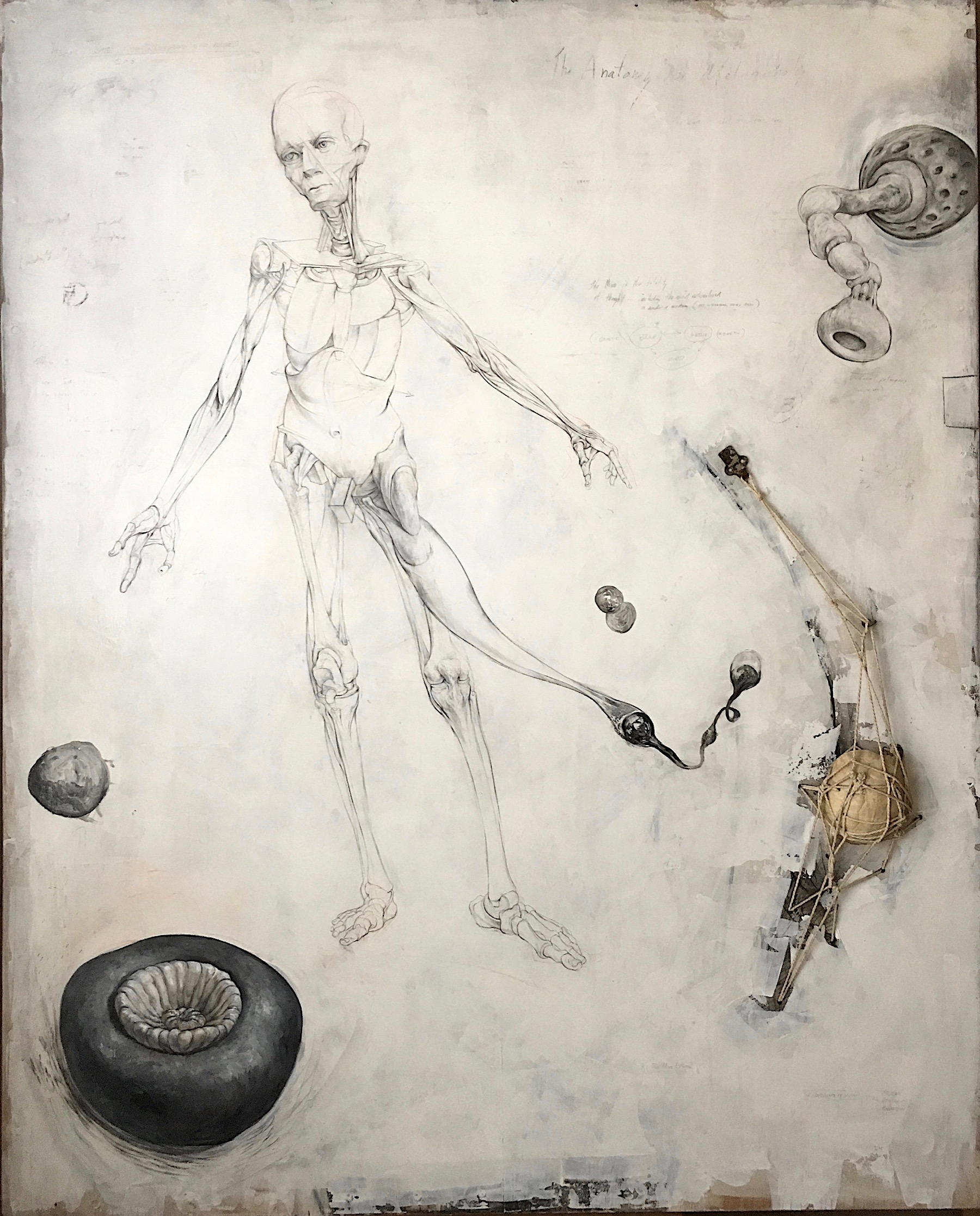 """Heroic Figure with Pathogens and Allies, 1997-2018, graphite, acrylic, string, hardware, carapace on panel, 59 3/4 x 48 x 2 3/8"""""""