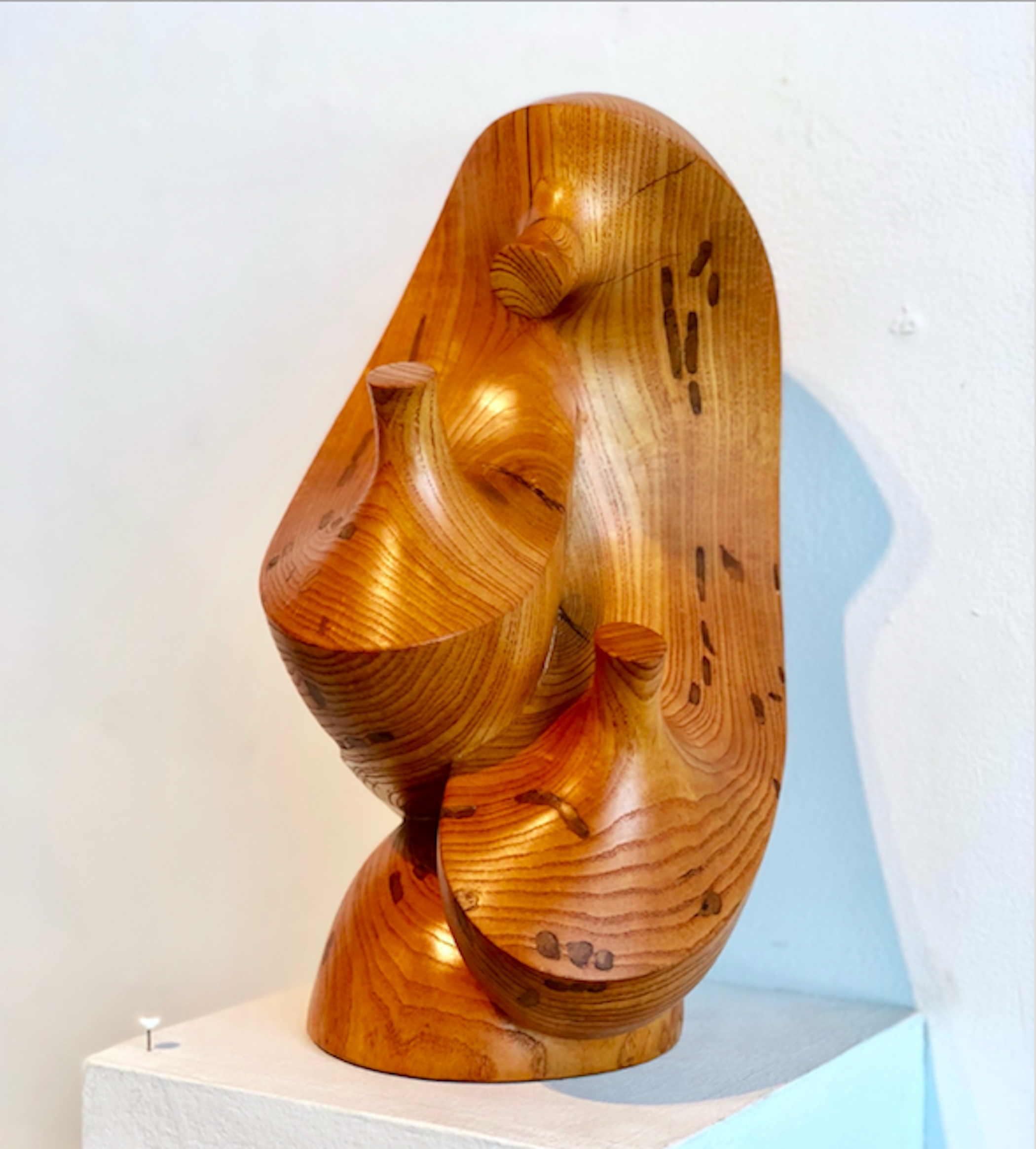 Whispers of Love, 2004, Texas ash, 12 x 6 1/2 x 7 1/2""