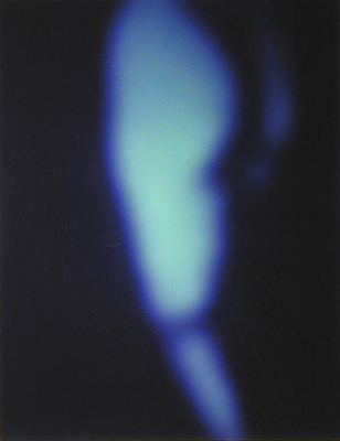 Reverie No. 25 2002 Silver dye bleach photograph, ed. 1/10 17 1/2 x 13 1/2""