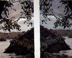 """Second Glance 2004 Mixed media on photograph 34 x 24"""""""