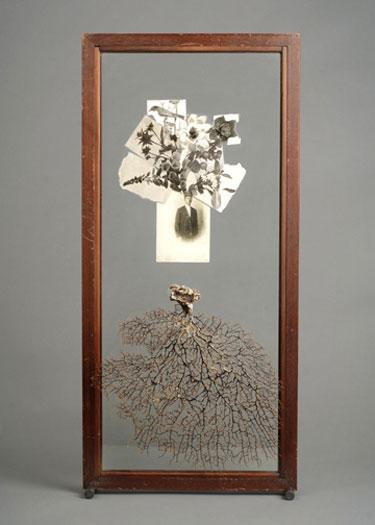 "Slide 2007 Assemblage - glass cabinet door, sea fan, photographic postcard, book illustrations, steel pegs 30 1/8 x 14 x 3"""
