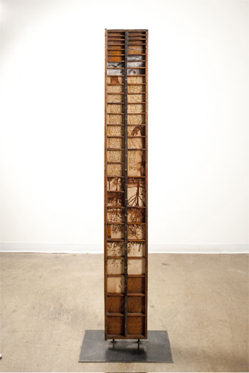 """Vestigial Memory, 2009, wooden type tray, book and rotogravure newspaper images, steel, 74 1/2 x 21 x 9 1/4"""""""